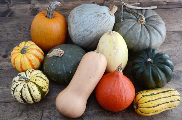 Group of Winter Squash